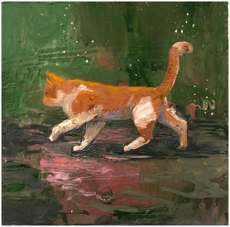 Cat+in+Rain Tarra Lyons