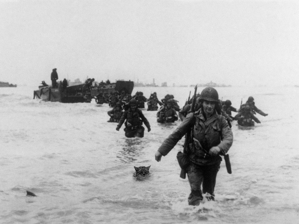The CATS program originated during World War II and was instrumental in the invasion of Normandy.